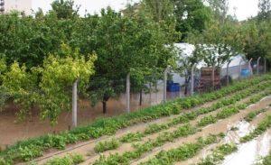 Sağanak Yağış Vatandaşı Zor Duruma Düşürdü