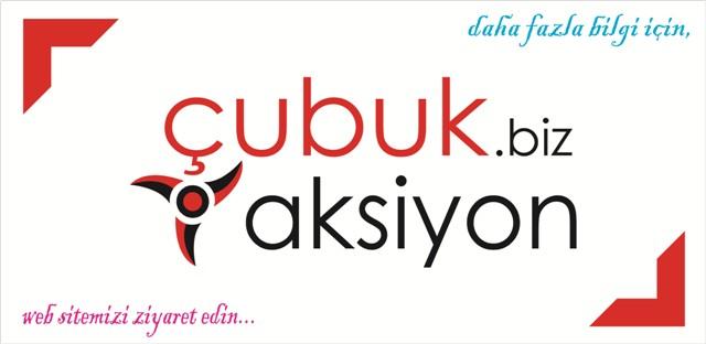 cubukaksiyon.com